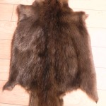 Beaver Pelt Throw